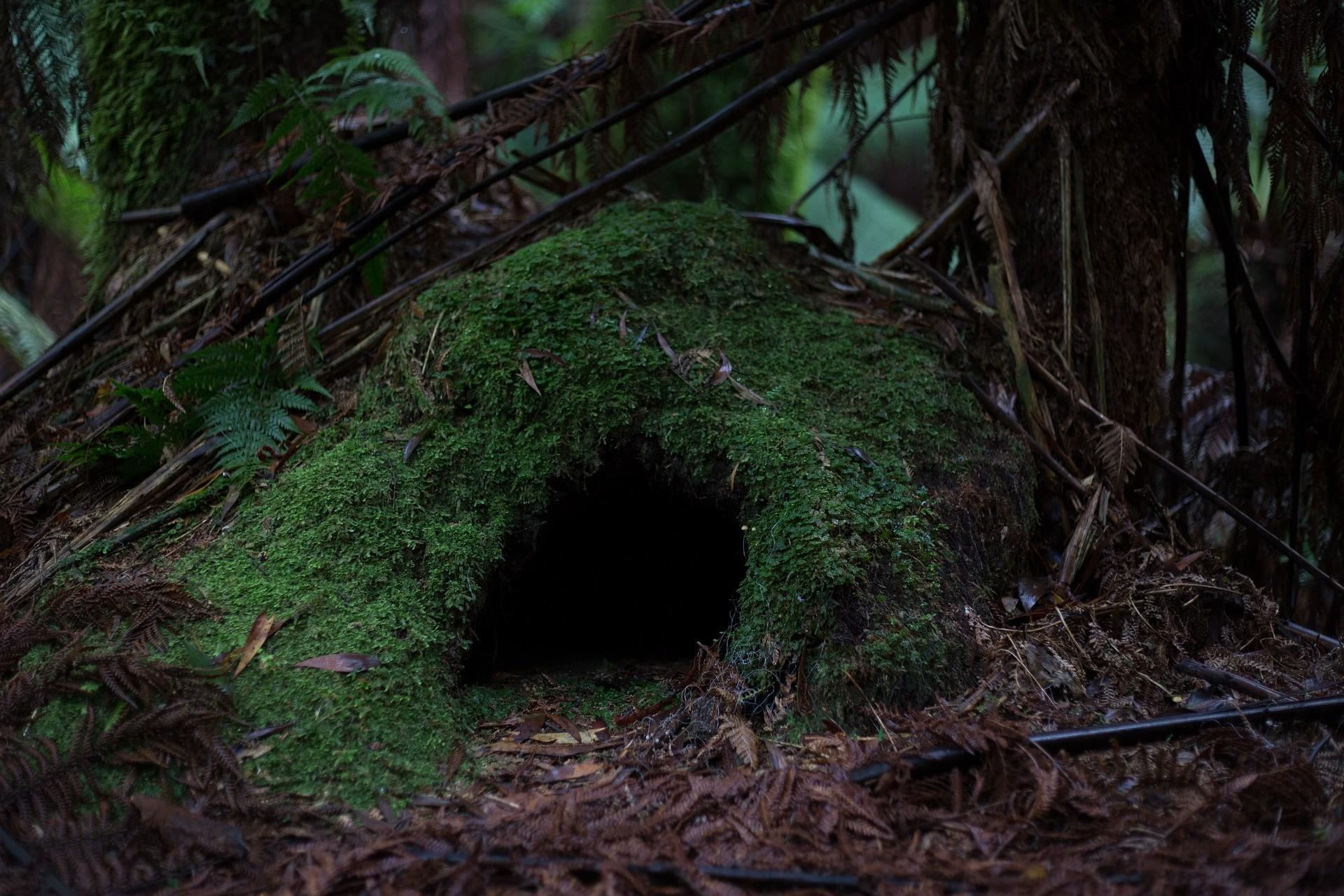 Darstellung einer Höhle